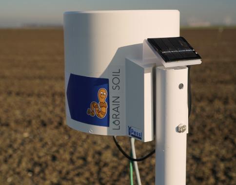 GeoBas LoRain Soil bodemstations